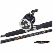 Master 7ft 2pc, BB, Spinning Combo, Assorted Colors