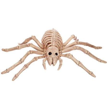 Morris Costumes Plastic Spider Skeleton Small Decorations & Props, Style SE18215](Small Plastic Skeletons)
