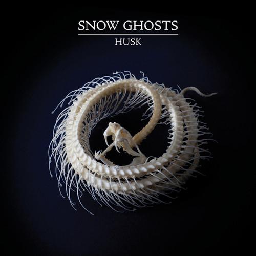 Husk (Vinyl)
