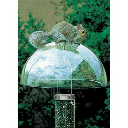 - Droll Yankees Inc SQG Squirrel Baffle Squirrel Guard - Green