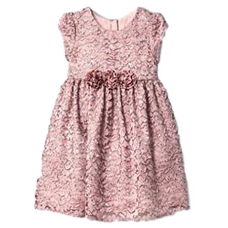 Mia & Mimi Little Girls Fancy Luxe Lace Dress Special Occasion/ Princess (5T, Blush Glitter Lace) (Halloween School Girl Fancy Dress)