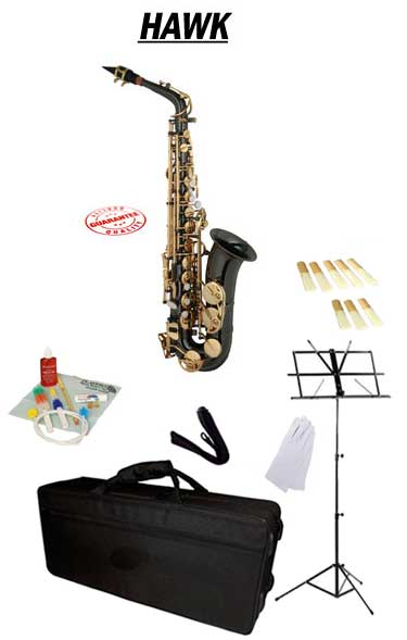 Hawk Black Alto Saxophone School Package with Case, Reeds, Music Stand and Cleaning Kit by Hawk
