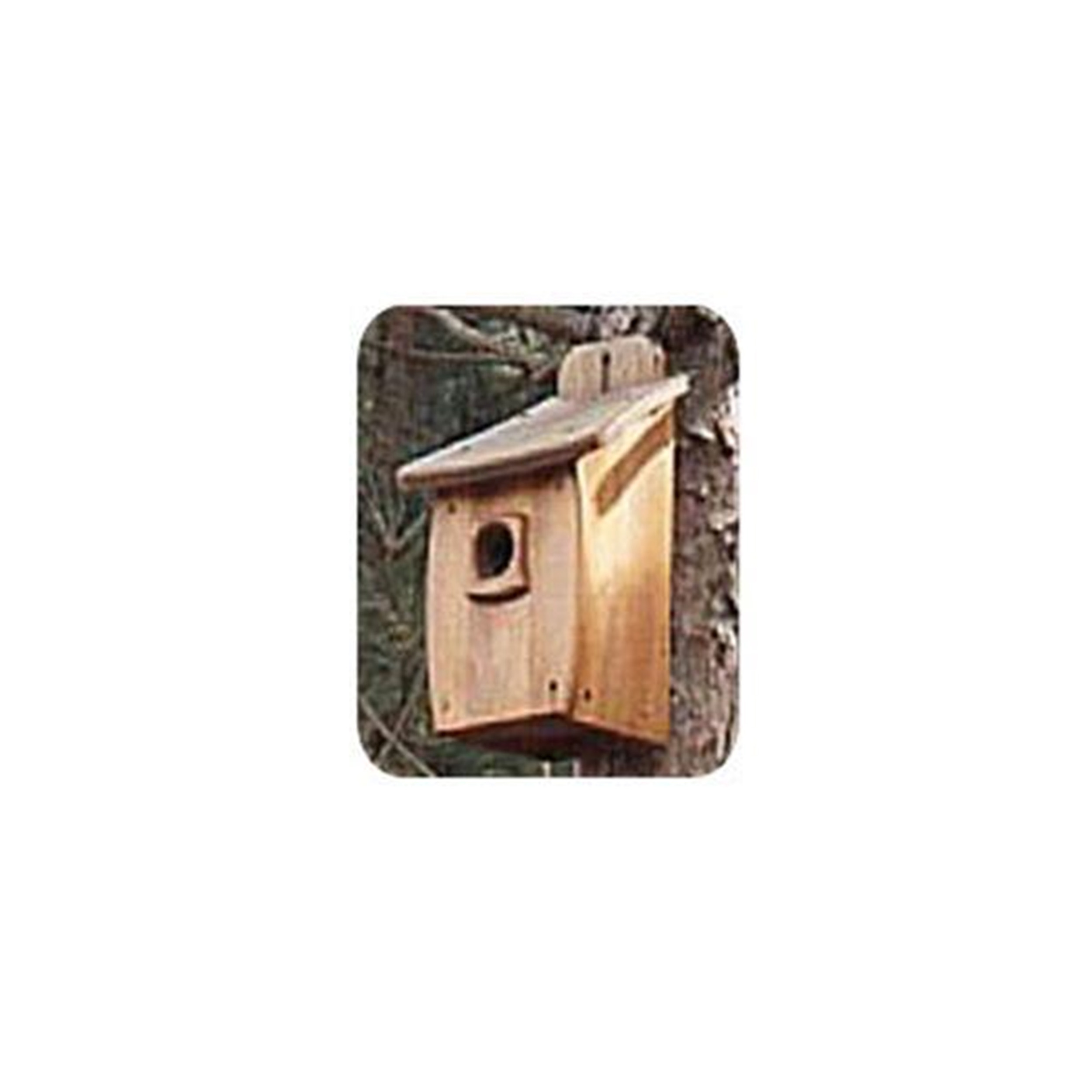 Woodworking Project Paper Plan to Build Extra Large Birdhouse by