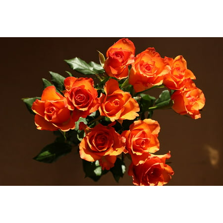 LAMINATED POSTER Bouquet Nature Roses Orange Flowers Fire Flower Poster Print 24 x 36
