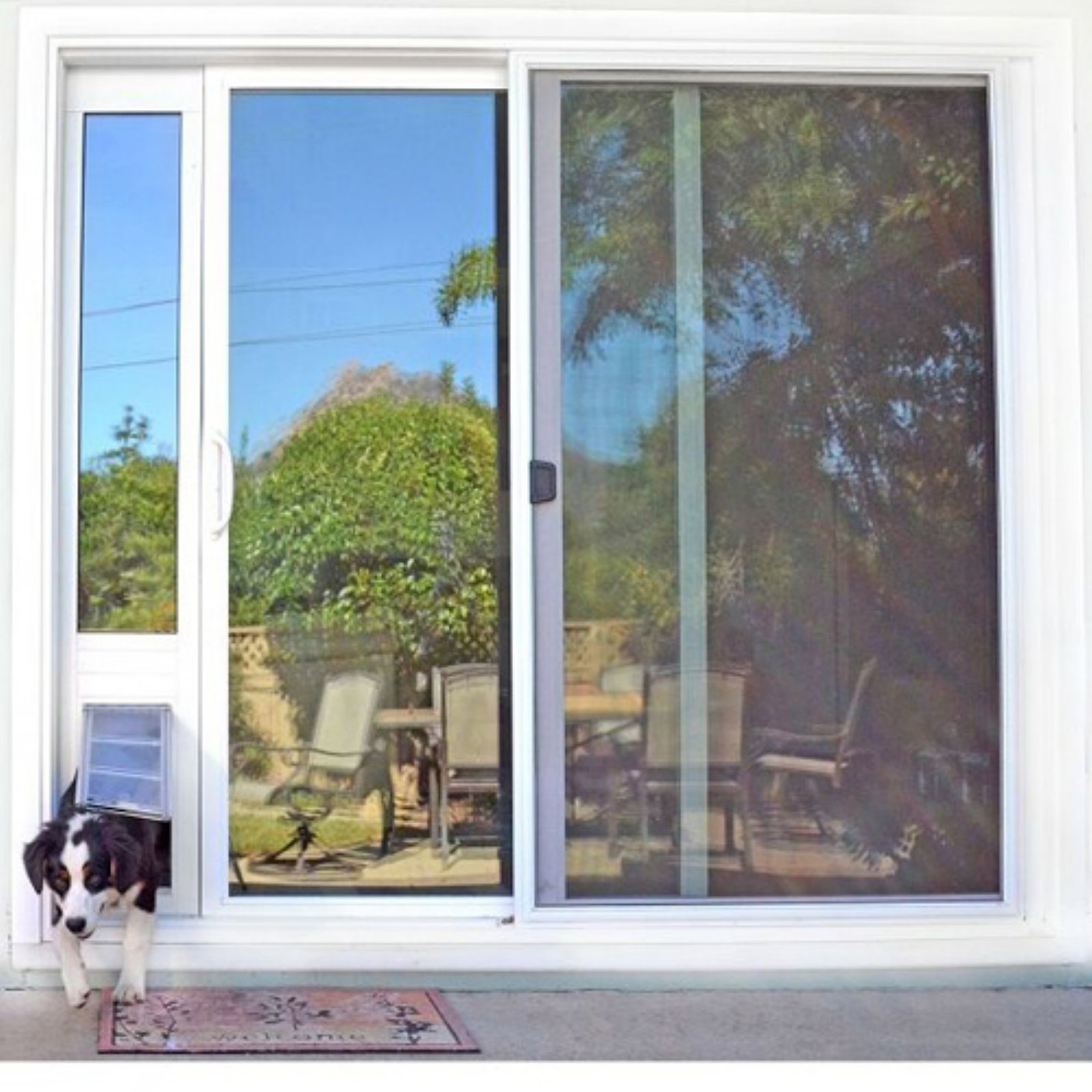 Endura Flap Pet Doors Thermo Panel 3E For Sliding Glass Doors 74.75 In. To  77.75 In. Tall   Walmart.com