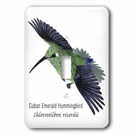 Humminbird Switch - 3dRose Cuban Emerald Hummingbird, Double Toggle Switch