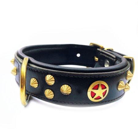 - Doggone Collars Ranger Luxury Bridle & Napa Leather & Oxidized Brass Square Studs Texas Star Dog Collar (22