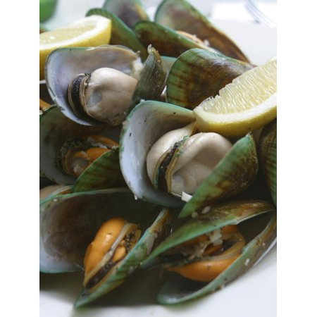 Green Lip Mussels, New Zealand Print Wall Art By Douglas