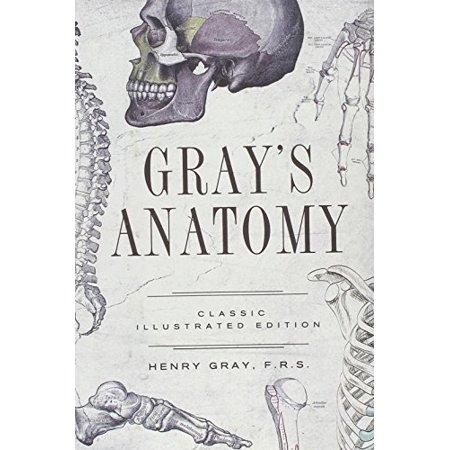 Anatomy Descriptive And Surgical Walmart