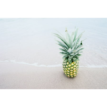 Fresh Pineapple - Laminated Poster Pineapple Food Fresh Tropical Beach Sand Fruit Poster Print 11 x 17