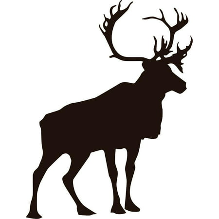 Custom Decals Large Zoo Deer Buck Ations 10 X 20