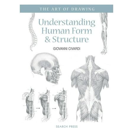 Art of Drawing: Understanding Human Form &