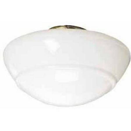 Hunter Fan Company 22565 Contemporary Schoolhouse Globe