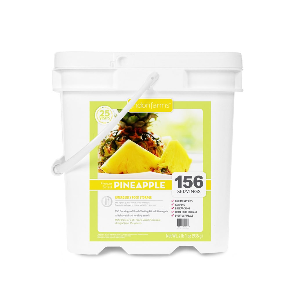 Lindon Farms 156 Servings Freeze Dried Pineapple by Overstock
