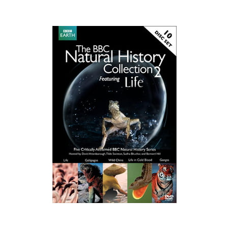 BBC High Definition Natural History Collection 2: Life (DVD) - Halloween History Bbc