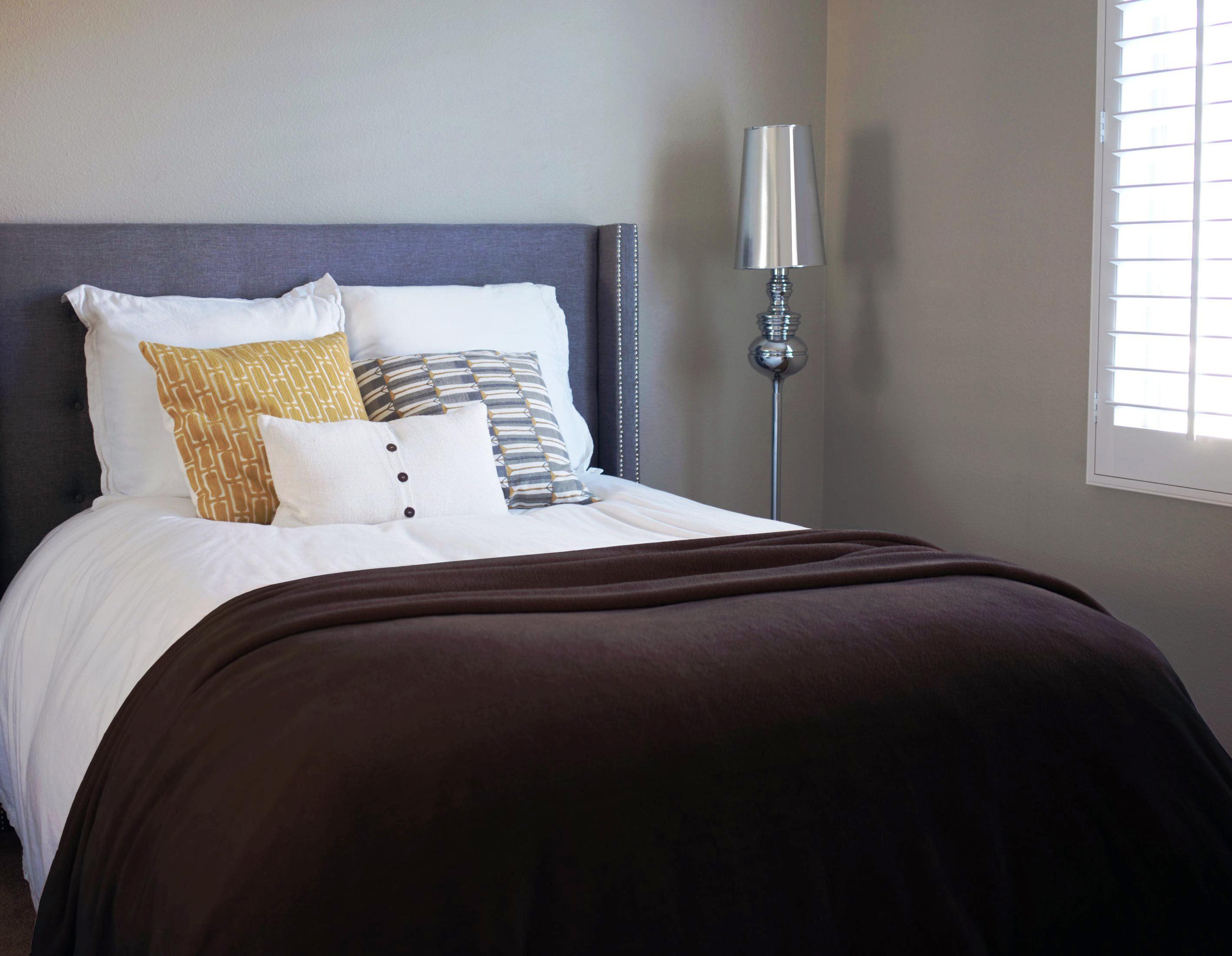 Napa All Season Super Soft Cozy Microplush Velvet Throw Blankets, Bed Blanket, Lightweight... by Napa