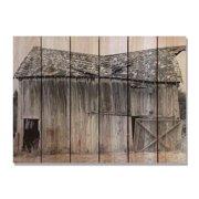 Day Dream HQ OB3324 33 x 24 in. Old Barn Inside & Outside Cedar Wall Art