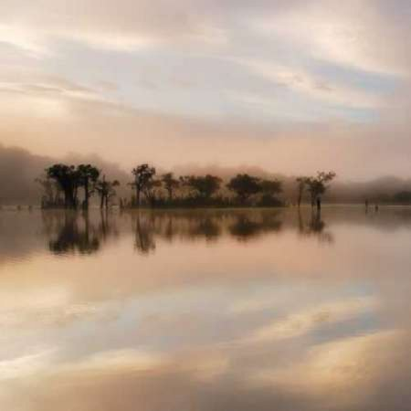 Dawn Mist on the Amazon Poster Print by Andy - Amazon Infinity Mist