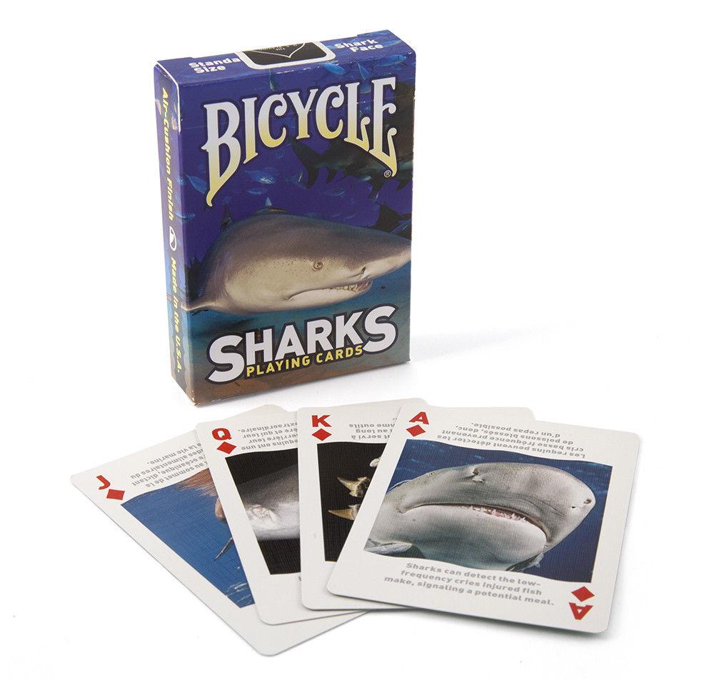 Клетка с акулами покер смотреть онлайн онлай игры казино