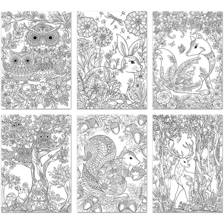 Living In Color Art Therapy Coloring Pages 6 Sheets/Pkg-Woodland Zen -  Walmart.com - Walmart.com