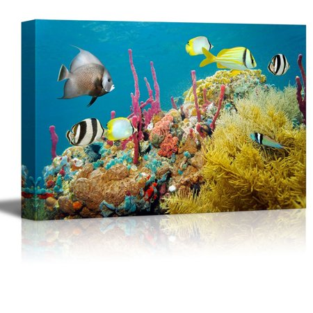 Wall26 - Canvas Prints Wall Art - Colored Underwater Marine Life in a Coral Reef with Tropical Fish, Caribbean Sea | Modern Wall Decor - 16