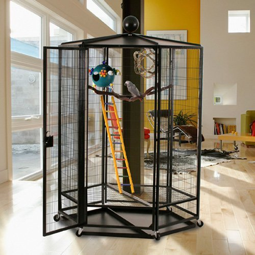 Cages By Design 5 ft. Diameter Indoor Aviary