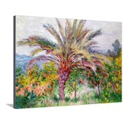 Palm Tree at Bordighera, C.1884 Tropical Style Impressionist Fine Art Painting Stretched Canvas Print Wall Art By Claude Monet