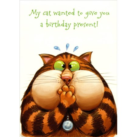 Designer Greetings Cat Gives You a Present Funny Birthday Card ()
