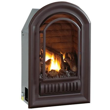 Millivolt Propane - HearthSense A-Series Liquid Propane Ventless Fireplace Insert - 20,000 BTU, Millivolt Control, Model ALI