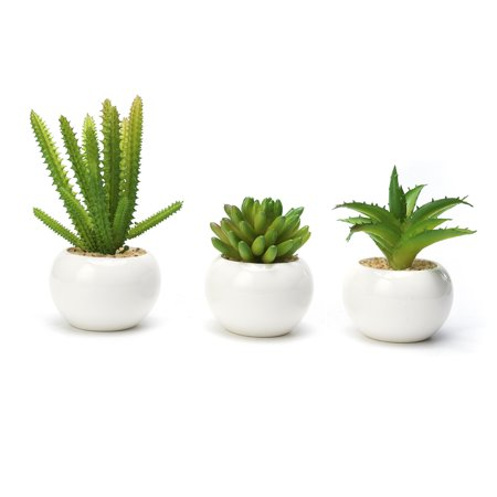 Modern Mini Artificial Succulent Plants Potted In Round White Ceramic Pots For Home Decor Set