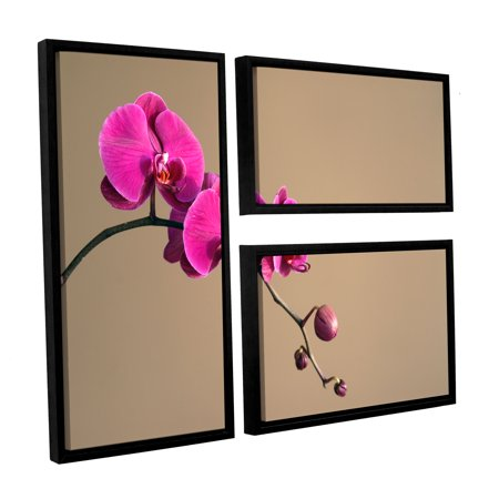 (ArtWall Magenta Orchid by Elena Ray 3 Piece Framed Photographic Print on Canvas Set)