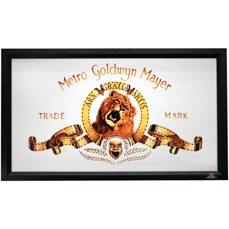 MGM MGM-80-VX HDTV Format Fixed Frame Dual Screen (80 Hdtv Fixed Frame)