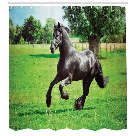 Animal Decor Shower Curtain Set, Firesian Male Horse Masculine Driving Force Of Life Power Inner Strenghth Symbol Print, Bathroom Accessories, 69W X 70L Inches, By Ambesonne Symbol Power Accessories