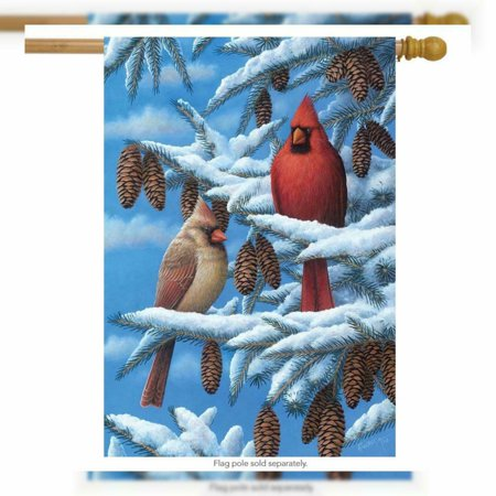 Briarwood Lane Winter Cardinals House Flag Seasonal Bird Couple 28  x 40  Briarwood Lane Winter Cardinals House Flag Seasonal Bird Couple 28  x 40   condition: New Package Dimensions: 11.4 x 7 x 0.7 inchesItem Weight: 4.8 ouncesManufacturer: Briarwood LaneBrand: Briarwood LaneMPN: NA