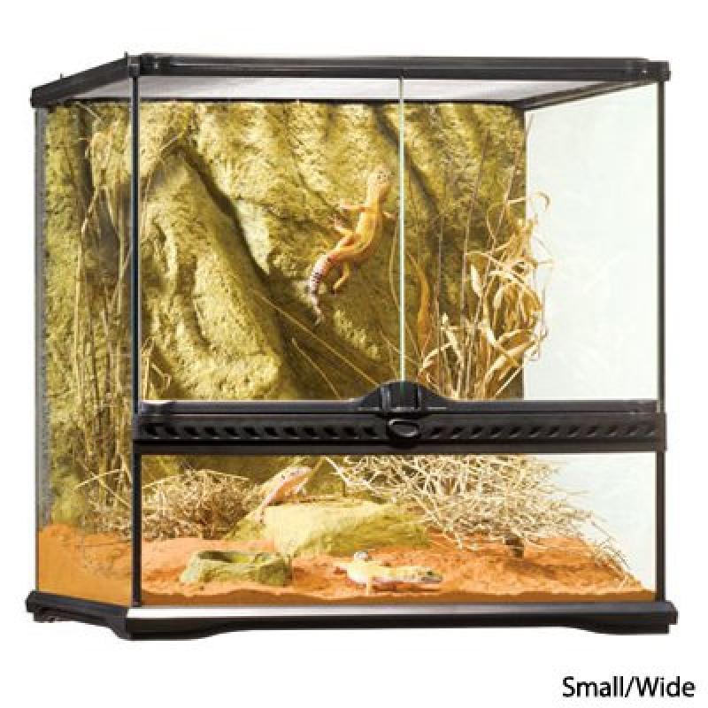 Exo Terra Glass Terrarium, 18 by 18 by 18-Inch