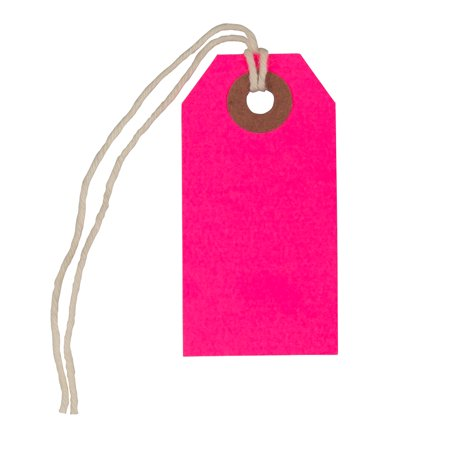 JAM Gift Tags with String, Neon Pink, 10/Pack, Tiny, 2 3/4 x 1 3/8 Even with their tiny size, the JAM Paper Gift Tags with String can make a big impact. You only need to set your imagination and creativity free.