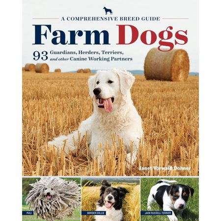 Farm Dogs   A Comprehensive Breed Guide To 93 Guardians  Herders  Terriers  And Other Canine Working Partners