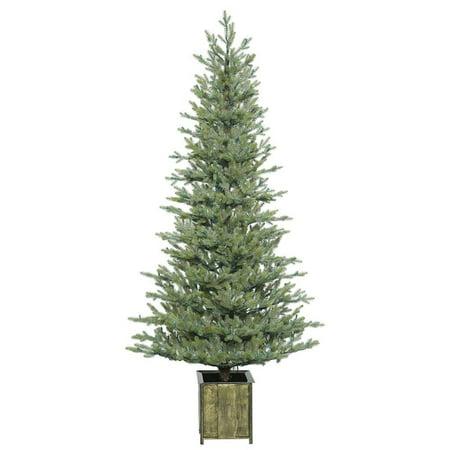 Vickerman 409725   6 X 34  Potted Newfield Fir Tree Christmas Tree  S165860