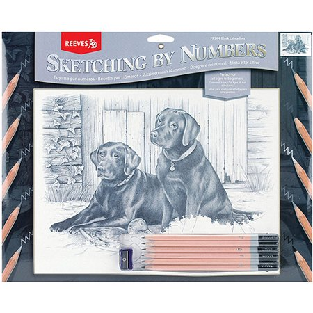 Sketching By Number Kit, 12