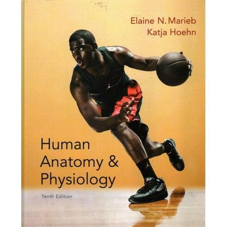Human Anatomy & Physiology Tenth Edition + Laboratory Manual ...