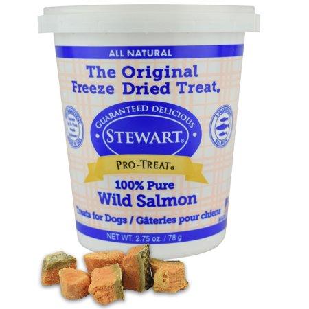 Stewart Freeze Dried Wild Salmon Dog Treats by Pro-Treat, 2.75 oz. - Orange Tub