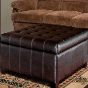 Noble House Debra Storage Ottoman in Brown