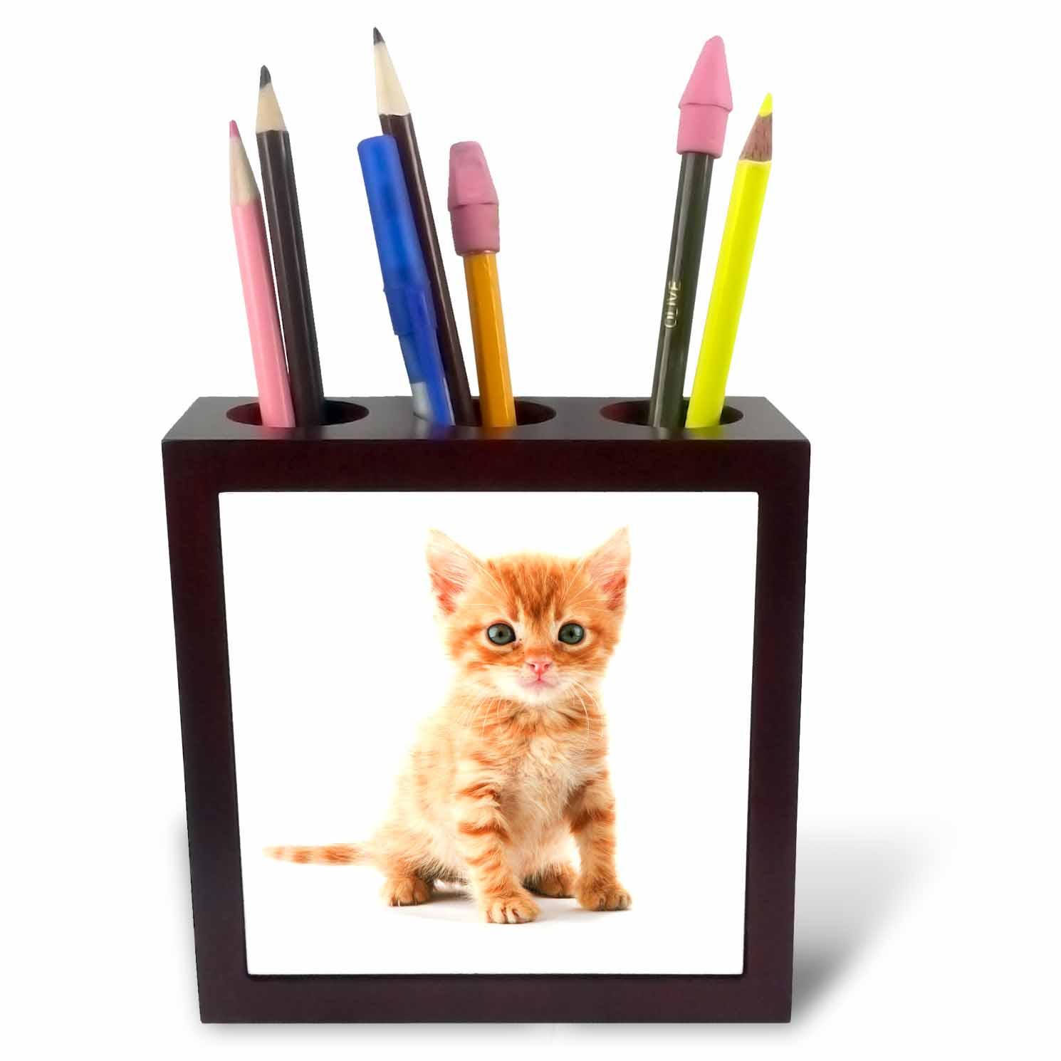 3dRose Cute Orange Tabby Kitten, Tile Pen Holder, 5-inch