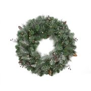 """Northlight 30"""" Prelit Frosted Arctic Mist Pine Artificial Christmas Wreath - Clear Lights"""