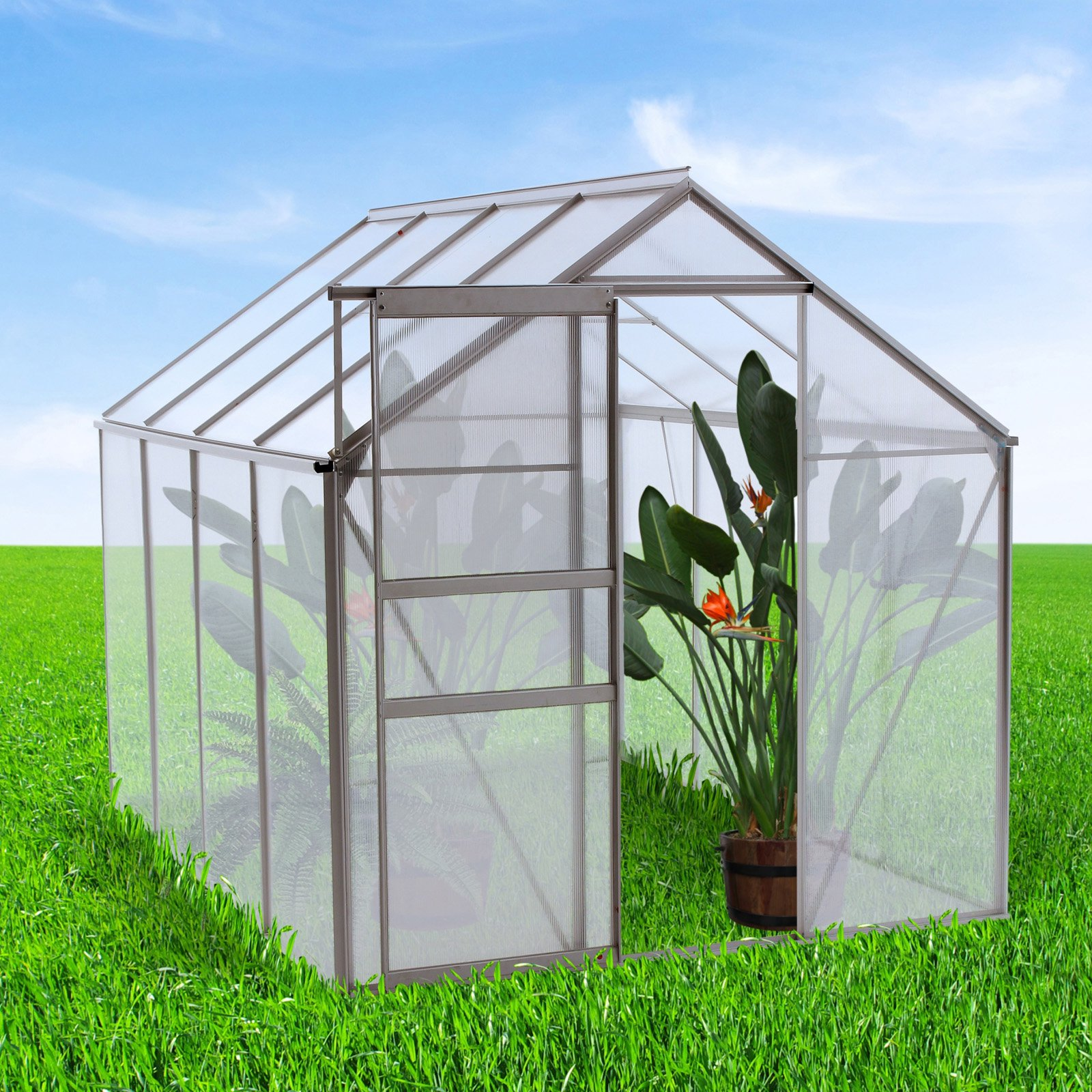 Ogrow Walk-in 6 x 8 ft. Lawn and Garden Greenhouse by Overstock