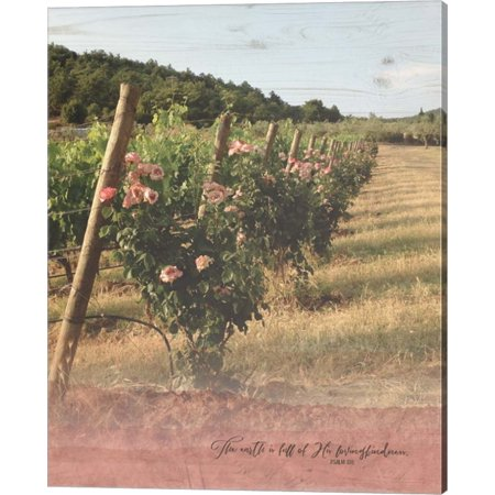 Vineyard Roses by Tammy Apple, Canvas Wall Art, 16W x 20H