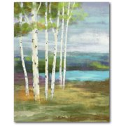 Courtside Market Birches at the pond Gallery-Wrapped Canvas Wall Art, 16x20