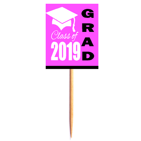 12pack Class of 2019 Pink Graduation Party CUpcake Desert Appetizer Food Decoration Picks](Halloween Party Food Appetizers)