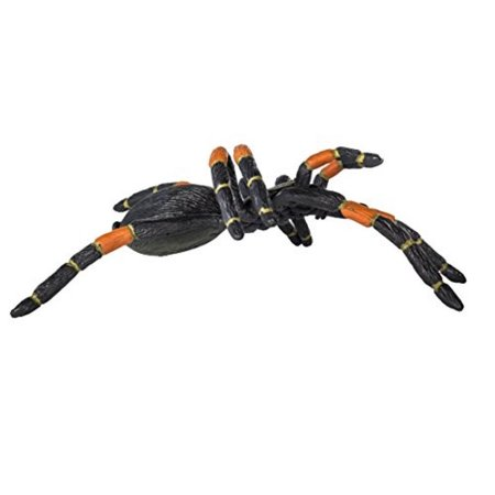 Safari Ltd Hidden Kingdom - Orange-Kneed Tarantula - Realistic Hand Painted Toy Figurine for Ages 3 and Up - Large