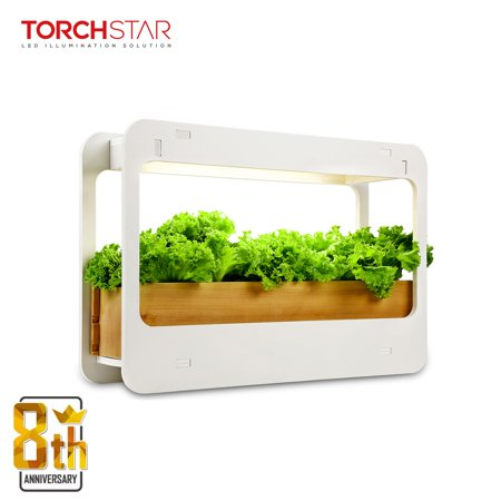 TORCHSTAR Plant Grow LED Light Kit for Valentine, Countertop Garden with Timer Function, 4000K, - Led Lights For Shirts
